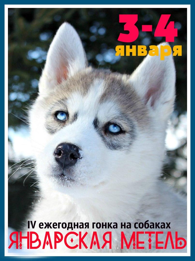 Афиша Ижевск Январская Метель 2018 спринт+мид в Удмуртии!