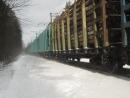 25.02.2017 Ржевский лесопарк, грузовой поезд с электровозом ВЛ-10 на перегоне Заневский Пост - Ржевка