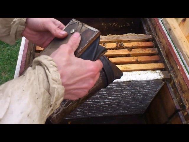 Пчелы от покупки до сильной пчелосемьи часть 1