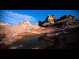WILD NATURE - Chillout Mix ULTRA HD - 4K