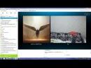 Малолетка показала сиськи киску вирт видеочат скайп вебку секс трахнул попу грудь голая сосёт минет шлюха развёл мастурбирует - Видео Dailymotion
