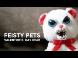Feisty Pets - Valentine's Day Bear from ThinkGeek