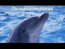 Дельфинотерапия ·•●❥ Природные Альфа волны ·•●❥ Релаксация
