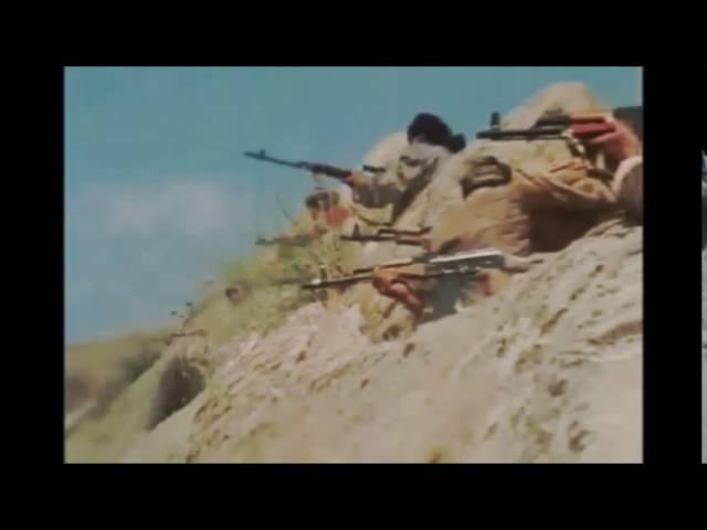 Песни Афгана. Афганское эхо Михаил Осипов