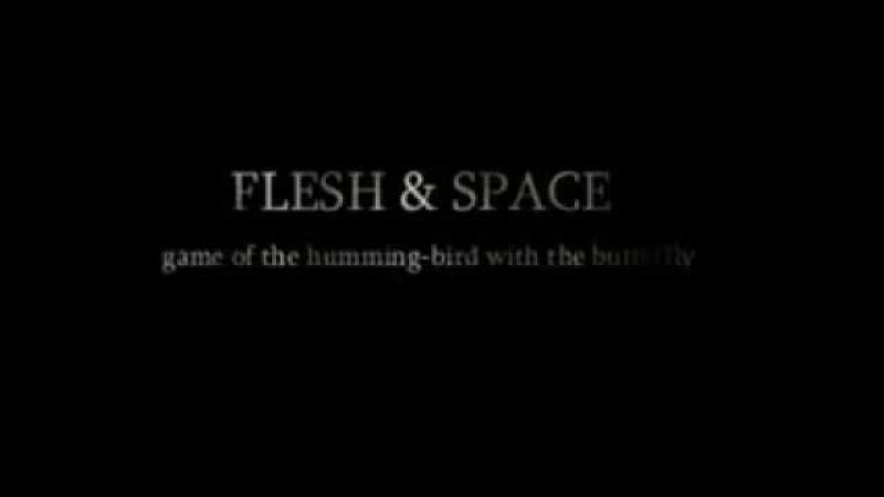 FLESH SPACE - game of the humming-bird with the butterfly