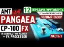 AMT PANGAEA CP-100FX ПАНГЕЯ. Подробный обзор Круговерть 12, часть 1