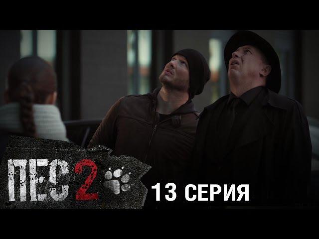 Сериал Пес - 2 сезон - 13 серия