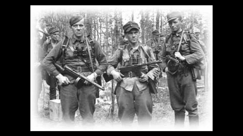Puolustusvoimien Katsaus - Jatkosodan hyökkäysvaihe