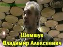 Владимир Шемшук о руской волшебной культуре