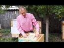 УЛЕЙ ВЕЛИКОРУСЬКИЙ ™ Часть 2 Beekeepers Honeybees Beehives ミツバチ