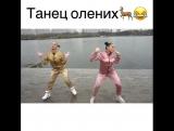 Танец олених