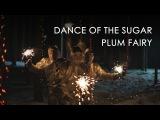 Dance of the Sugar Plum Fairy - Kosmosky Tank Drum (Танец Феи Драже, 5 глюкофонов)