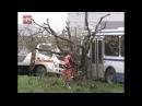 Ребенок угнал пассажирский автобус и попал в ДТП в районе Колмово Великого Новг ...