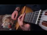 The Last Of Us Fingerstyle Guitar Main Theme /w Guitar Tabs