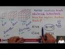 SAYI ÖRÜNTÜLERİ Soru Çözümü - 6. Sınıf Matematik (CYT)