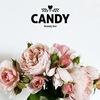 Студия красоты Candy Beauty Bar Калининград