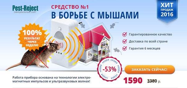 Продажа бизнеса интернет магазин спб авито белорецк частные объявления бизнес