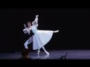 Благотворительный концерт звезд оперы и балета в Александринском театре 3 июня 2016