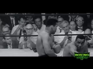 10 лучших защитных боксеров в истории