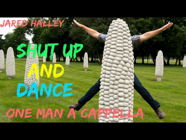 Shut Up and Dance Walk the Moon Jared Halley One Man Acapella