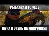 Ловля окуня и щуки на микроджиг. Рыбалка в городе с ультралайтом. Спиннинг TeamSalmo Tioga