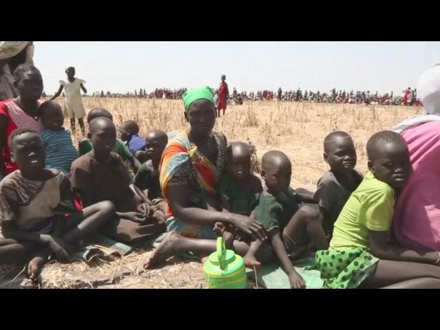 Голод в Южном Судане: люди едят водяные лилии (новости)