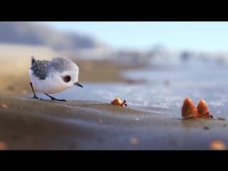 Песочник. - Piper.(2016)