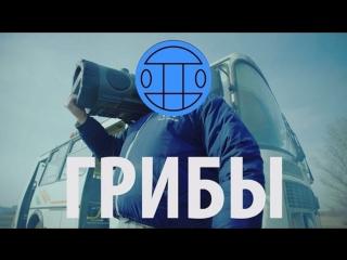 Премьера! Грибы - Тает Лёд (10 03.2017)