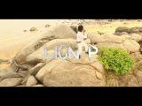 Lion P - Dab