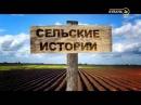 В гостях у Николая Курдюмова