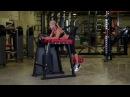 Обратная гиперэкстензия Legend Fitness Varsity Reverse Back Extension