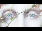 Introducing The Wonderland Book