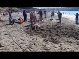 Nude wrestling on Baker Beach SF