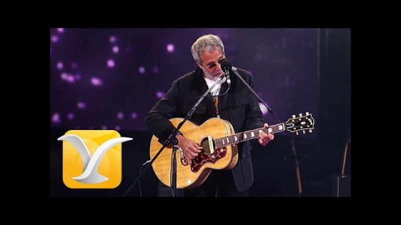 Yusuf Cat Stevens The First Cut is the Deepest Festival de Viña 2015 HD 1080p