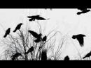 Аркадий Кобяков - Над рекой туман - YouTube