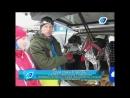 Скиджоринг гонка Ski Harpala от 47channel
