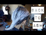 BACK TO NEUTRAL  ASH GREY HAIR TRANSFORMATION  FROM GREEN