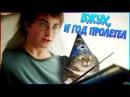 Гарри Поттер и Новый год Переозвучка