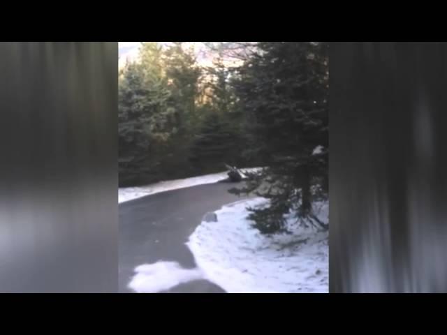 Shovel Fail Nirvana Remix Shovel Like Teen Spirit