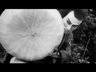 Век кино. История японского кино от Нагисы Осимы / 100 Years of Japanese Cinema (1994)