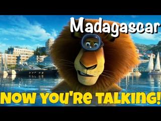Фраза NOW YOU'RE TALKING из мультфильма Мадагаскар