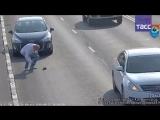 Ни дня без доброго дела — в Калининграде спасли котенка на оживленной трассе