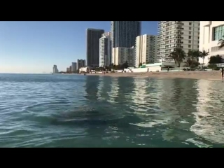 Крещение в Атлантическом океане