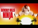 Ниндзя из Беверли Хиллз Beverly Hills Ninja 1997