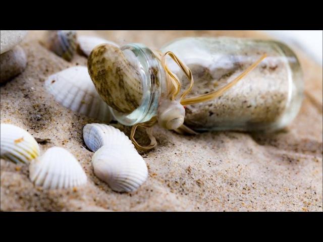 La bottiglia e il mare - The bottle and the sea