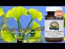 Гинкго билоба НСП Ginkgo Biloba NSP - растение, листья, дерево, GMP продукция - бад NSP