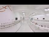 【360度動画】グッドスマイルカンパニー15周年記念展示会|グッスマ15周年