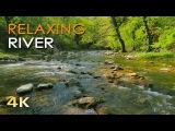 4K Relaxing River - Ultra HD Nature Video - Water Stream &amp Birdsong Sounds - SleepStudyMeditate