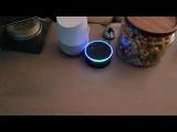 EchoGoogle Home infinite loop