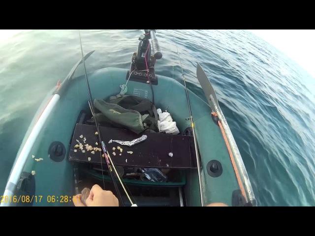 Рыбалка на Чёрном море с лодки 17.08.2016
